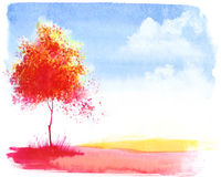 Autumn tree / background. Autumn tree. Watercolor background with space for text Stock Image