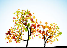 Autumn tree background. It is an autumn tree background Stock Photo