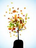Autumn tree background. It is an autumn tree background vector illustration
