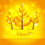 Autumn tree background with autumn leaves Royalty Free Stock Image
