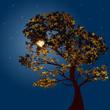 Autumn tree on a background lunar night. And the starry sky. Vector illustration. Square location royalty free illustration