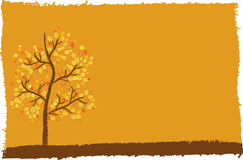Autumn tree background with space for your text Royalty Free Stock Photos