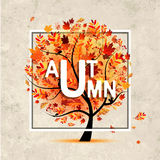 Autumn tree, banner on grunge paper for your design Royalty Free Stock Image