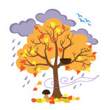 Autumn tree, the birds flew away, seasonal signs of autumn. Royalty Free Stock Photography