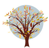 Autumn tree. Tree in autumn with birds and multicoloured leaves Royalty Free Stock Photo