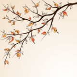 Autumn tree branch vector illustration