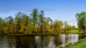Autumn tree with bright foliage is reflected in the lake.  stock footage
