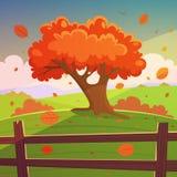 The Autumn Tree Royalty Free Stock Photos