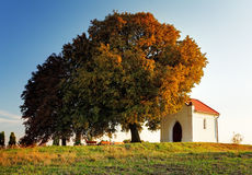 Autumn tree and chapel Stock Image