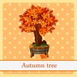 Autumn tree, colorful symbol of autumn Stock Photo