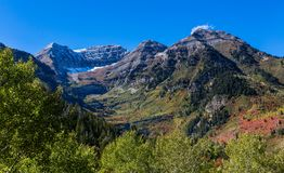 Fall Mointain Colors in Northern Utah. Autumn tree colors on Fall day in the mountains of northern Utah Stock Photos