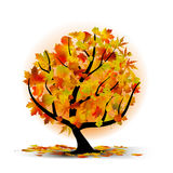 Autumn tree with colourful leafs Royalty Free Stock Photo