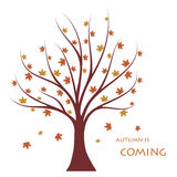 Autumn tree. Autumn is coming concept. Flat illustration royalty free illustration