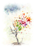 Autumn Tree Concept Immagine Stock