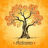 Autumn tree. defoliation leaf fall. Season Royalty Free Illustration
