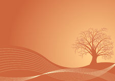 Autumn tree design. Beautiful abstract vector autumn tree design Royalty Free Stock Photography