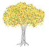Autumn tree drawing royalty free illustration