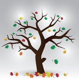 Autumn tree eps10. Autumn tree with color leafs eps10 Royalty Free Illustration