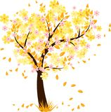 Autumn tree with falling leaves. And flowers Stock Photography
