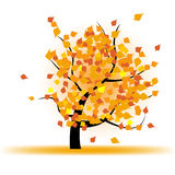 Autumn tree with falling leaves Royalty Free Stock Photo