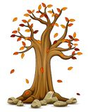 Autumn tree with falling leaves Royalty Free Stock Images