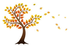 Autumn tree. With falling leaves on white background Royalty Free Stock Photos