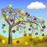 Autumn tree, flock of birds. Autumn tree with colorful leaves on a background of hills and grass, cloud, and a flock of migratory birds on the horizon. Vector Royalty Free Stock Photo