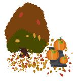 Autumn tree and giant pumpkins royalty free illustration