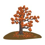 Autumn tree on a glade. Beautiful vector illustration. Doodle.  Royalty Free Stock Images