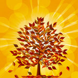 Autumn tree on a golden background Royalty Free Stock Photo