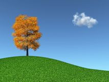 Autumn Tree on a grassy hill Stock Images