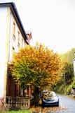 Autumn Tree & hus Arkivbild