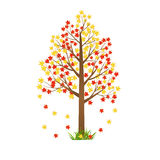 Autumn tree illustration Stock Images