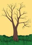 Autumn tree vector. Illustration of autumn tree with grass vector illustration