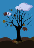 Autumn tree. Autumn illustration with autumn tree, autumn leaves falling and sky with clouds Royalty Free Stock Photos