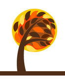 Autumn tree isolated Royalty Free Stock Images