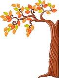 Autumn tree isolated on white background Royalty Free Stock Photo