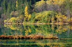 Autumn tree and lake in Jiuzhaigou Stock Photo