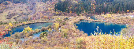 Autumn tree and lake  panorama  in Jiuzhaigou Royalty Free Stock Photo