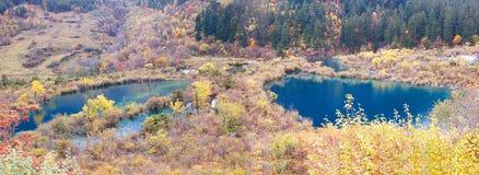 Autumn tree and lake  panorama  in Jiuzhaigou Royalty Free Stock Photo