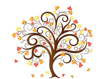 Autumn Tree with Leaves Vector Illustration Royalty Free Stock Photography