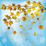 Autumn tree, light nature background. Autumn tree with yellow flying leaves, light nature background, place for text stock illustration