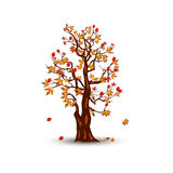 Autumn tree with maple leaves, cartoon on white background. Royalty Free Stock Photos
