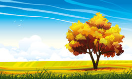 Autumn tree and meadow on a blue sky. Stock Image