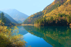 Autumn tree mountain and lake Royalty Free Stock Image