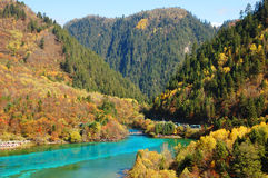 Autumn tree mountain and lake in jiuzhaigou Stock Photos