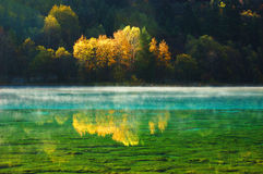 Autumn tree mountain and lake in jiuzhaigou royalty free stock photo