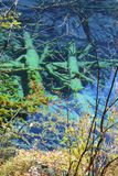 Autumn tree mountain and lake in jiuzhaigou Stock Photo