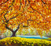 Autumn tree near water. Oil Painting Autumn landscape. Big autumn tree near the river. Gold, red, orange autumn leaves. Handmade Oil Painting. Autumn landscape royalty free stock photos