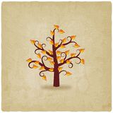 Autumn tree old background Royalty Free Stock Photos